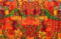 2011. szeptember 16. 11:17 - Komáromi Judit: A mindig újrakezdődő élet