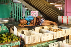 Sleeping at the market