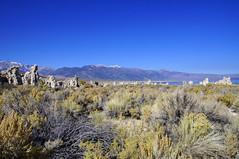 2011-10-15 10-23 Sierra Nevada 369 Mono Lake
