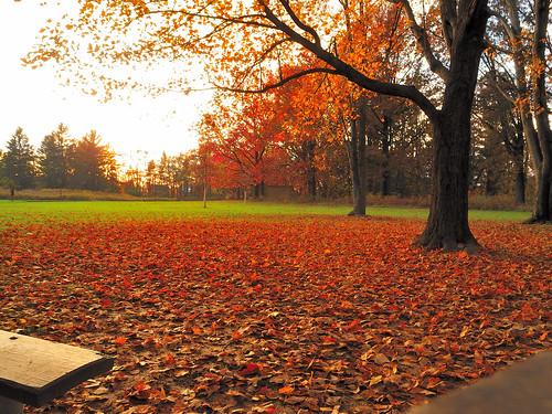 Blacklick Park_044_10-19-2011_01   by bfaling