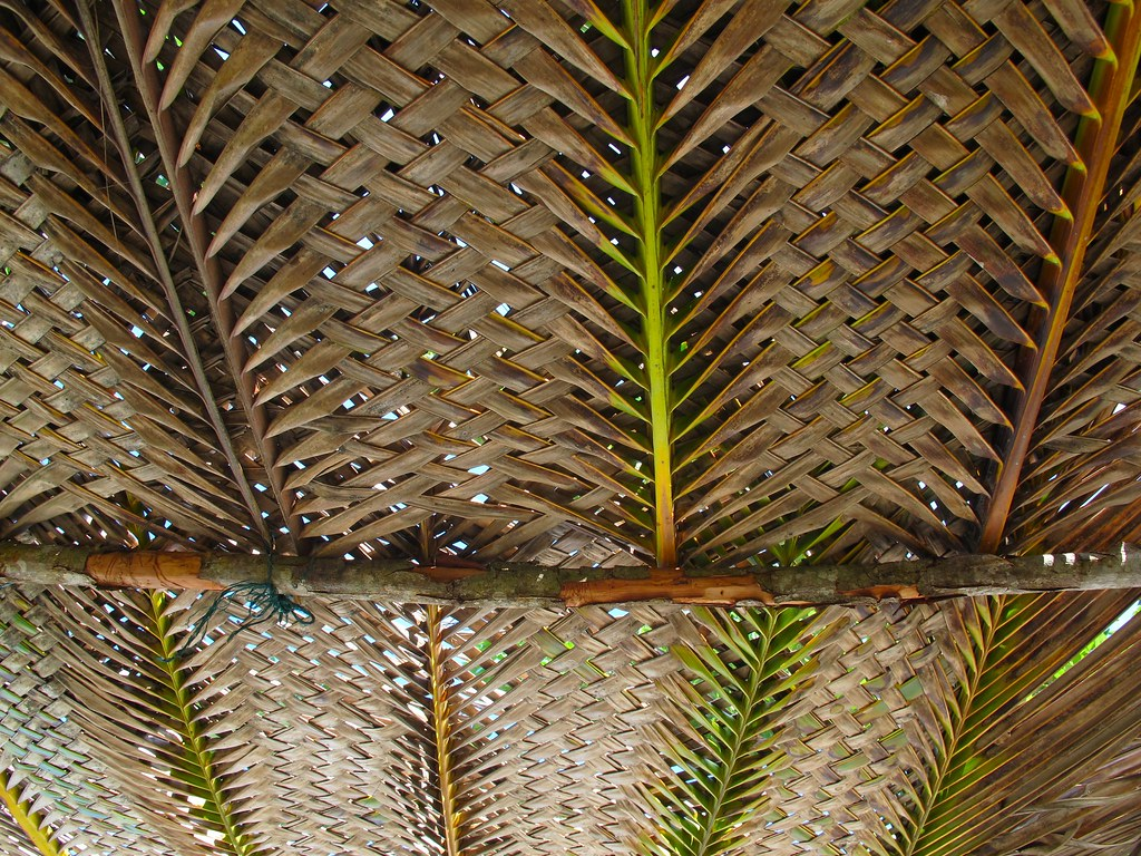Dry Palm Leaf Thatch Roof Margie Hatch Flickr