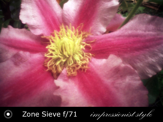 zs24-f71-05