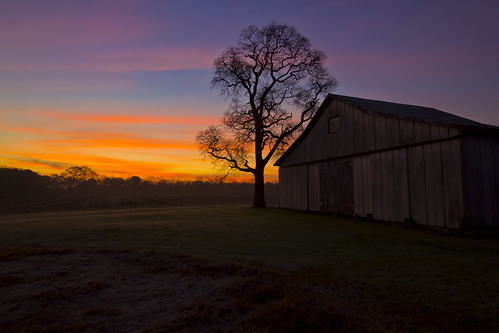 november tree barn sunrise farm