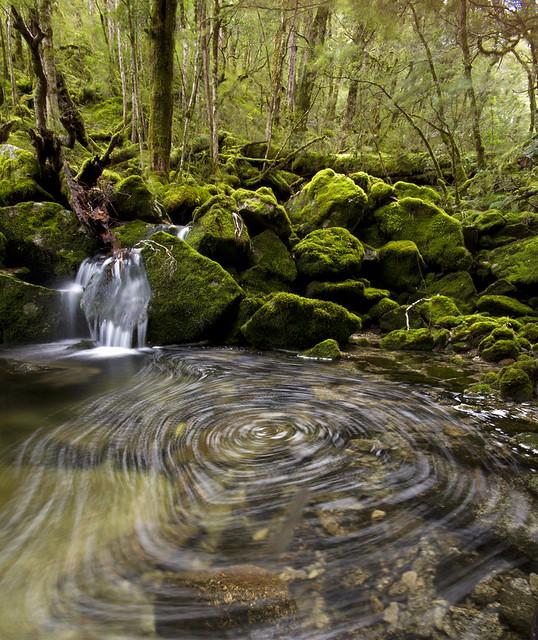 Klondyke Valley stream
