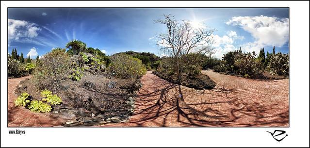 :: Jardin de Cactus II 360º ::
