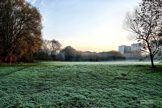 Autumn: Foggy Day