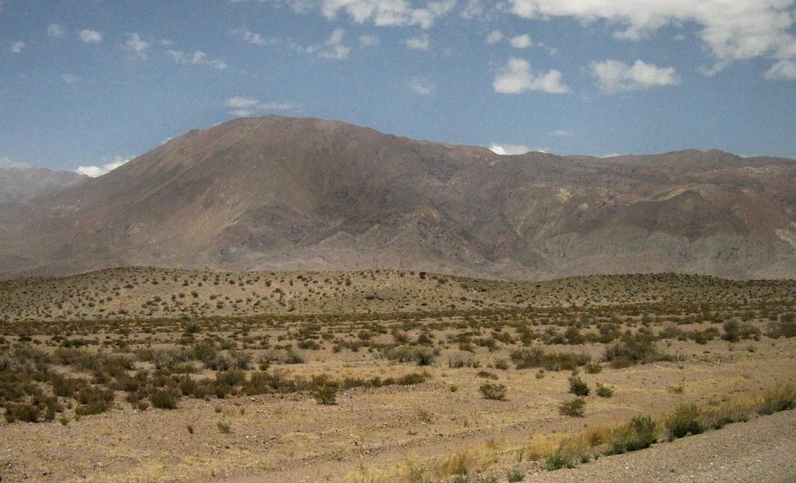 Mendoza 298