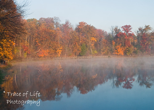 autumn ohio mist fall sunrise nikon sharonwoods