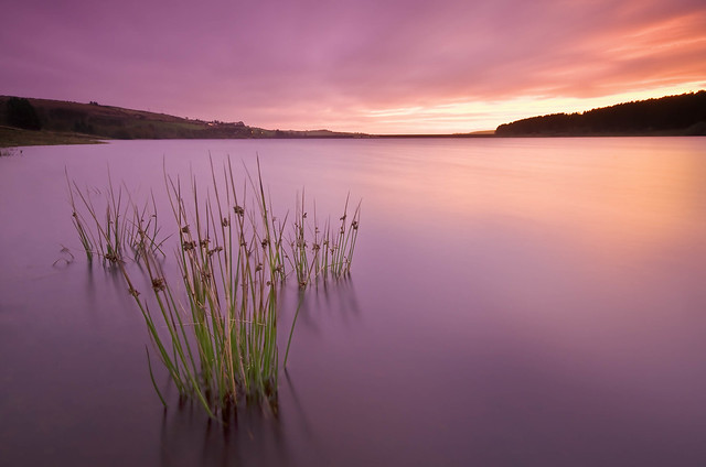 Waterline, West Yorkshire