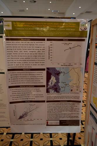 Ndabamenye et al.   by CIALCA