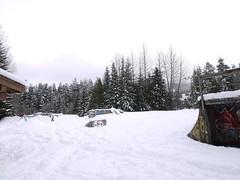 土, 2012-02-25 12:51 -