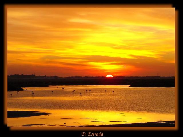 El lago de los flamencos [Explore - Nov 21, 2011]