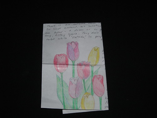 Tulips and notes, jail art