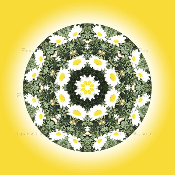 Natur Mandala Feng Shui Bild Margariten Printandpaint Flickr