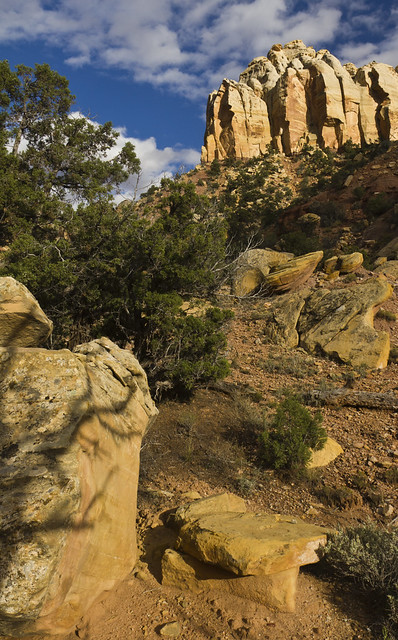 Burr Trail Road - Grand Staircase-Escalante National Monument, Utah