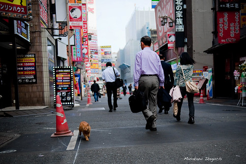 Untitled (6290088763) by Masakazu Ikeguchi