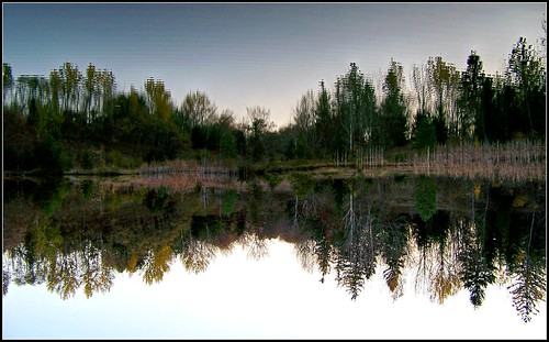 mypics lyn ontario canada water pond reflection reflections