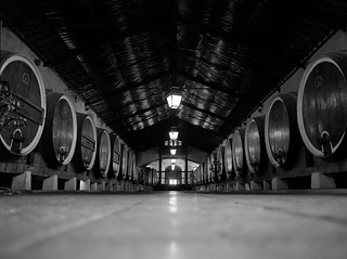 Colares Winery | by astroturtle