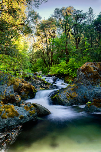 park longexposure nature water northerncalifornia forest waterfall nikon filter lee nd tropical d200 redding 18200 whiskeytown brandycreek