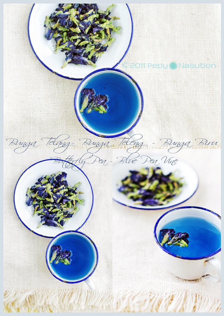 Collage of Natural Blue Food Dye from Butterfly Pea Flower ...