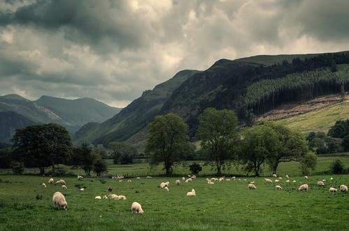 Valley Unknown
