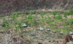 Grand Canyon: Phantom Ranch 2898