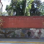 Mexico09_20090228_493