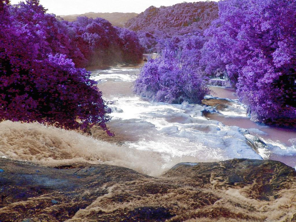 Sicht über die Wasserfälle von Agua Azul - Mexiko Farbe umkehren und invertieren