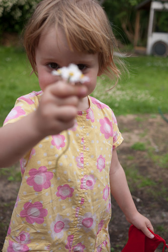 Blomplockning i trädgården | by Jeroen_Wolfers
