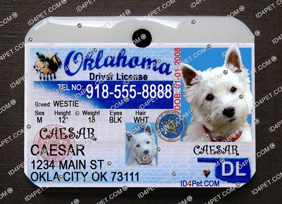 Oklahoma Pet Driver License | Beautifully printed on BOTH si… | Flickr