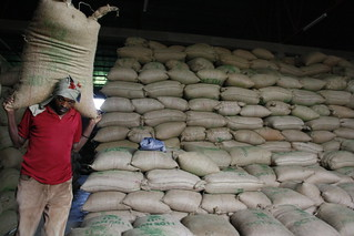 Thousands of bean bags | by DFID - UK Department for International Development