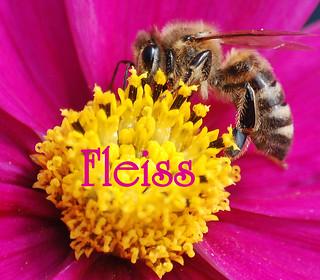 "Monatsmotto ""Fleiss"" / Monthly Motto ""study"""