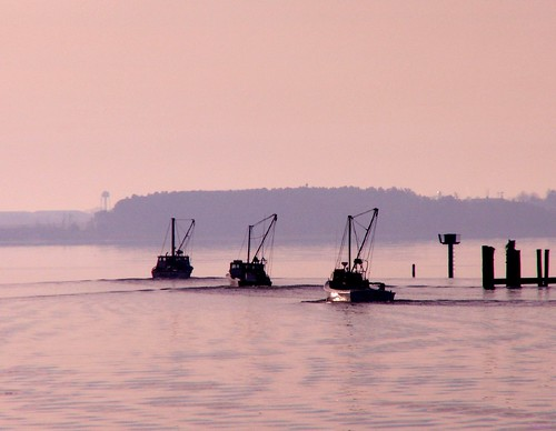 morning colour film 35mm boats dawn fishing pentax kodak maryland oysters chesapeake mesuper patuxentriver gold200 solomonsmaryland takumarf4580205mmzoomlens