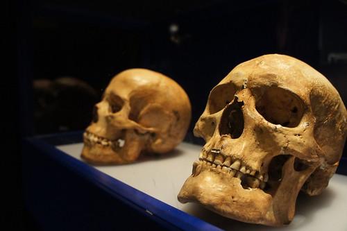 Skulls | by Pieterco