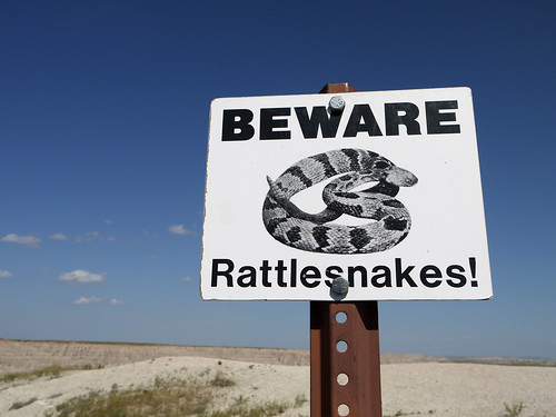 Rattlesnake sign | by david__jones