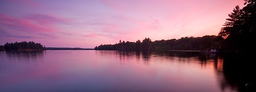 trees sunset lake ontario canada southfrontenac loughboroughwater