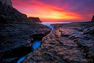 Davenport, Santa Cruz, CA | by Yan L Photography