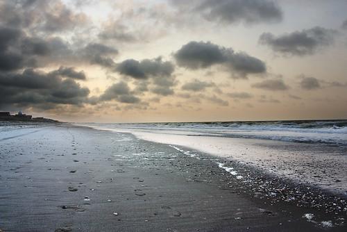 ocean morning sea vacation shells nature water clouds seashells sand waves alone footprints solitary longwalksonthebeach holdenbeach2011 badonkaconch