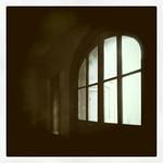 赤レンガの窓 #sapporo