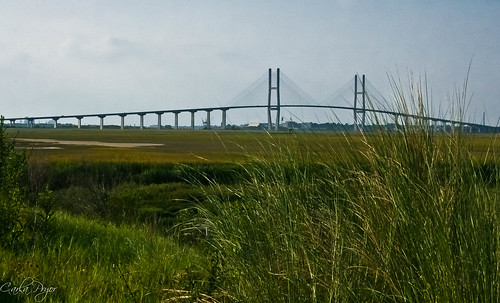 sidneylanierbridge brunswickga