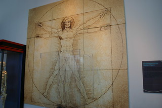 Leonardo Da Vinci, Proportions of the Human Figure | by Ryan Somma