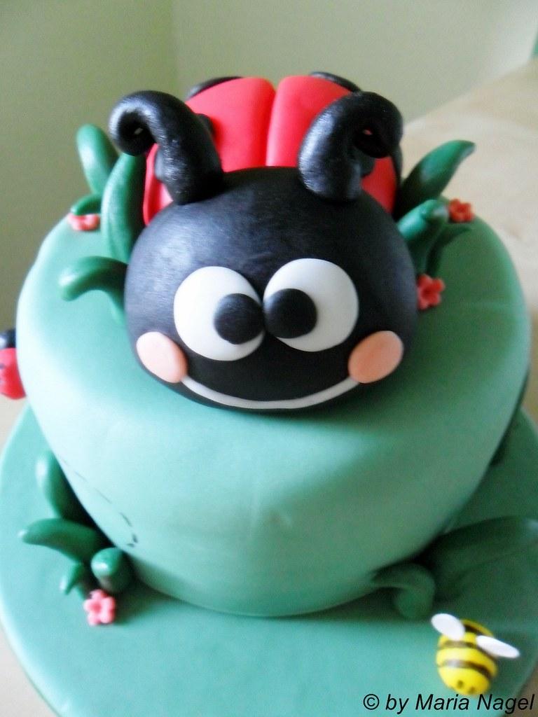 Marienkäfer Torte (Ladybird Cake) | Maria | Flickr