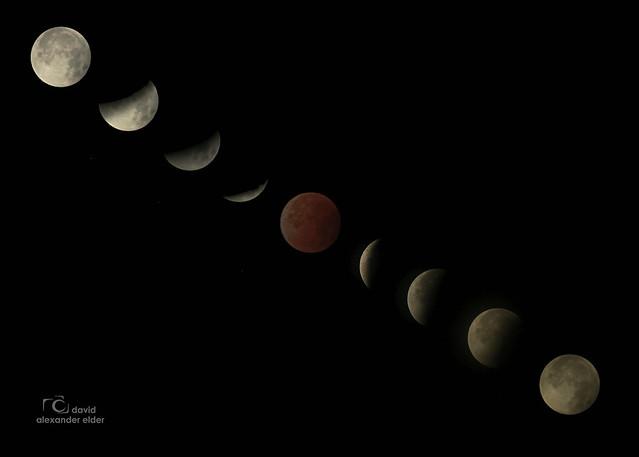 Blood Moon Lunar Eclipse Montage