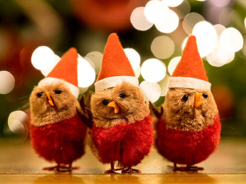Christmas Chicks | by wwarby
