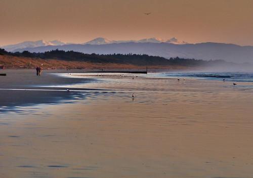 sea newzealand christchurch seagulls seascape mountains alps beach sunrise dawn coast canterbury southern coastal nz southisland seashore sunup daybreak waimairibeach