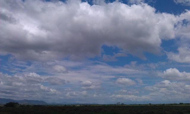 A vivid sky