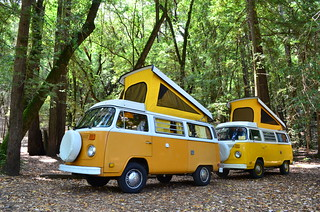 Things that will not exist next year: Bullfrog Pond Campground, Sonoma | by spieri_sf