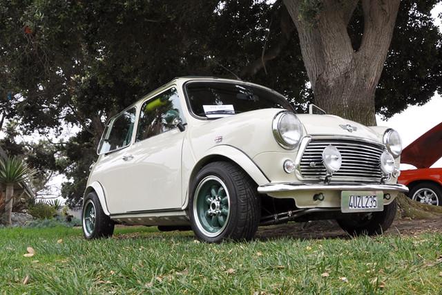Downton Mini