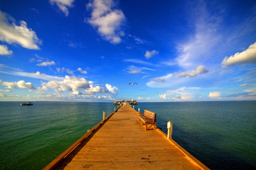 ocean wood city sky anna bird water clouds mexico island pier fly flying gulf angle florida maria seagull wide sarasota fl bradenton 14mm rokinon