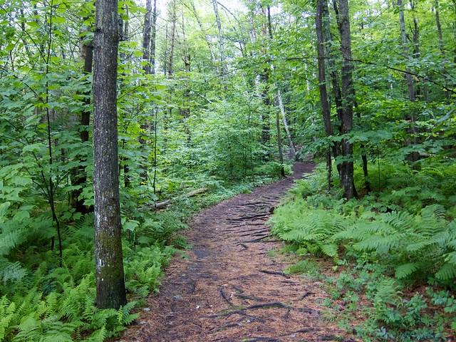 0:00:00 (0%): vermont hiking gilemountain